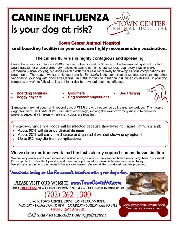 Canine Flu April 2015