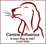 Canine Flu TCAH LOGO