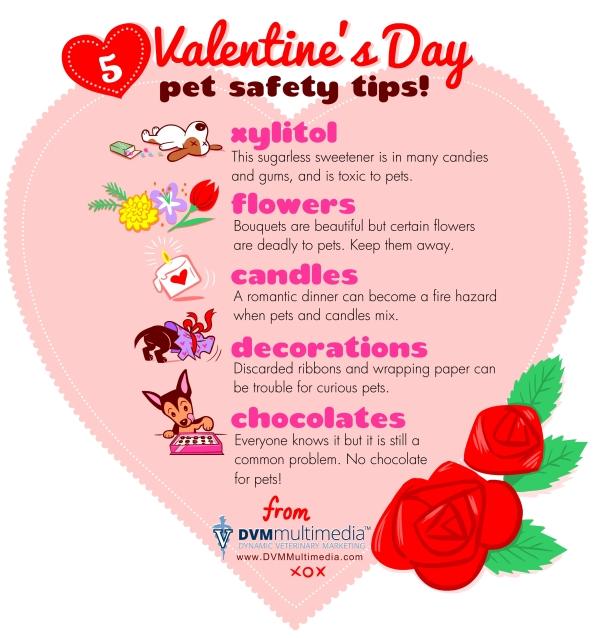 DVM-ValentineDay2