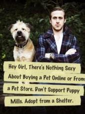 Ryan Gosling Breaking The Chain