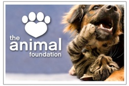 theanimalfoundation