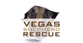 vegas-dog-rescue