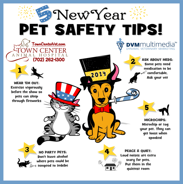 TCAH DVM - 5 New Year Tips