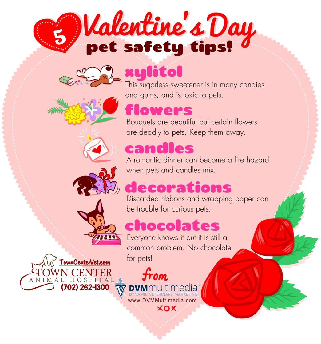 TCAH DVM - Valentine's Day