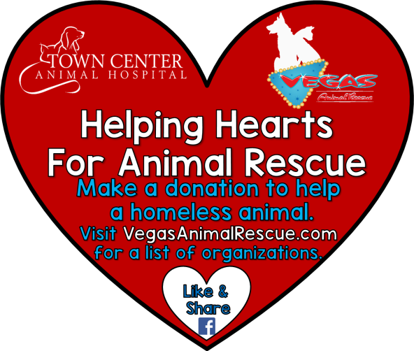 helping hearts animal rescue