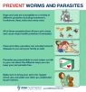 DVM-Parasites2