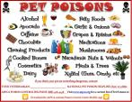 Pet Poisons - Updated Feb 28th 2015