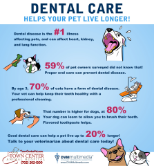 TCAH DVM - Dental Care