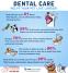 TCAH DVM - Dental Care
