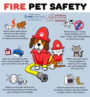 TCAH DVM - Fire Pet Safety