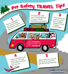 TCAH DVM - Pet Safety Travel Tips
