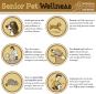 TCAH DVM - Senior Pet Wellness