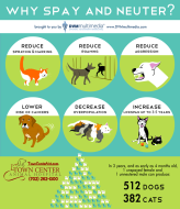 TCAH DVM - Why Spay and Neuter